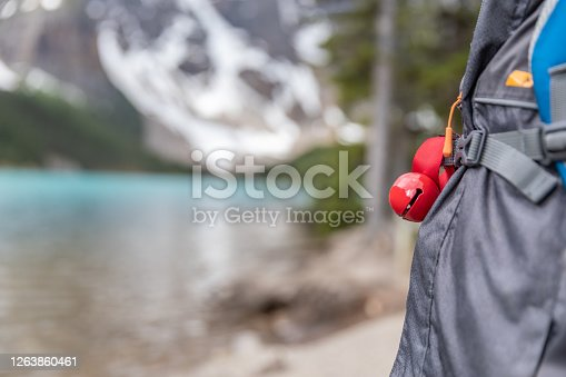 Happy Young Cute Redhead Boy Walking on Trail at Moraine Lake in Summer in Banff National Park, Canada. He is wearing a bear bell on him.