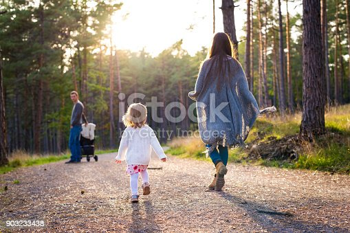 istock Happy young family taking a walk in a park, back view. Family walking together along forrest path with their daughter, father pushing the pram. 903233438