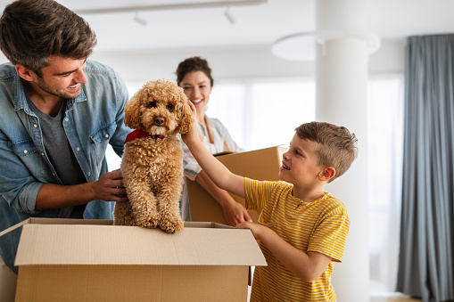 Happy young family unpacking cardboard boxes at new home. Moving in, new home people concept.