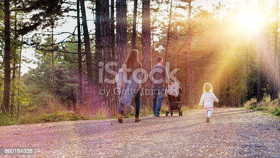 istock Happy young family walking in a park, back view. 860184338