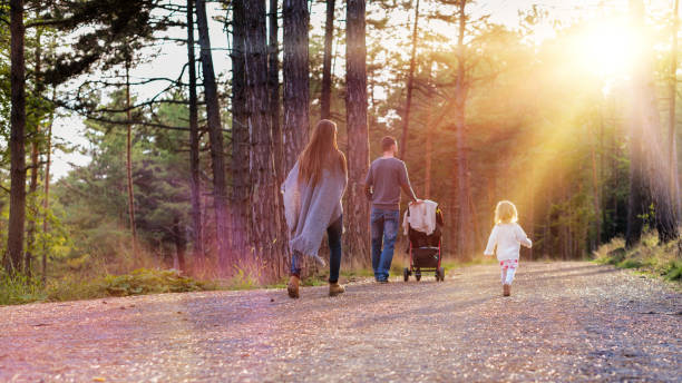 Happy young family walking in a park, back view. stock photo