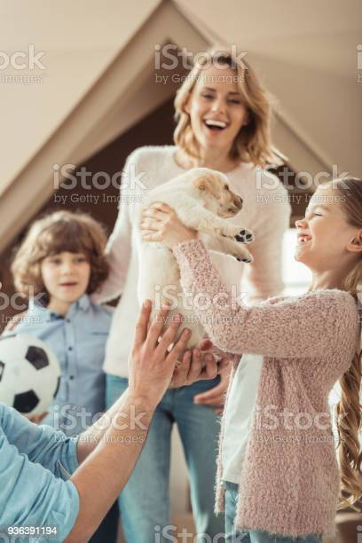 Happy young family with adorable labrador puppy in front of cardboard picture id936391194?b=1&k=6&m=936391194&s=612x612&h=bxnoxajejopiaiv pskfx8ax0fsfsszn0uvjrhonsr4=
