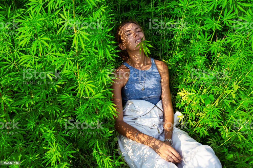 Happy young girl in a  marijuana bush stock photo