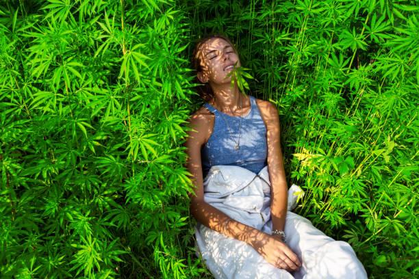 Happy young girl in a  marijuana bush stock photo