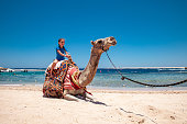 Happy Young Girl Riding a Camel in Egypt.