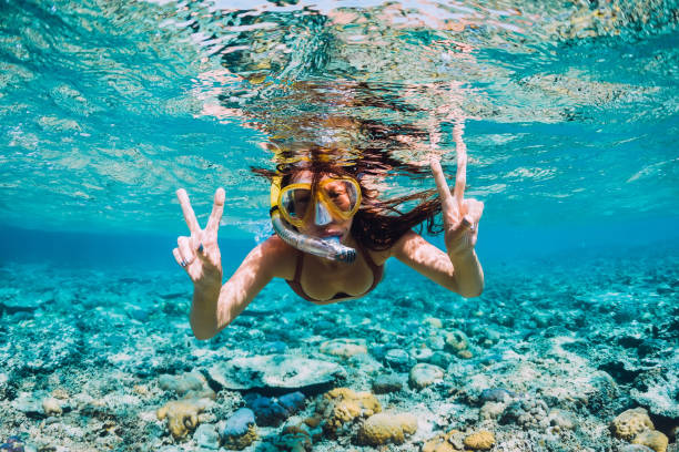 happy young woman swimming underwater in the tropical ocean - underwater diving stock photos and pictures