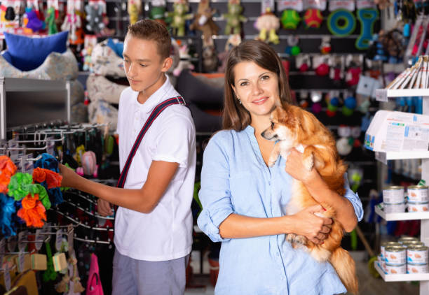 happy young woman with dog in pet store during shopping with man - pet shop and dogs not cats stock pictures, royalty-free photos & images