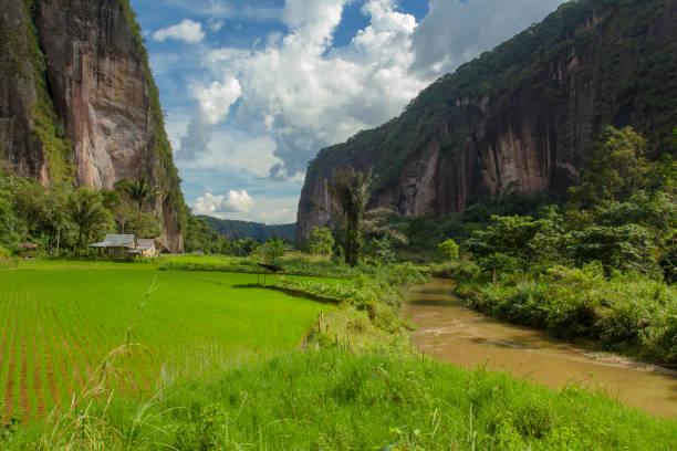 Harau valley in payakumbuh west sumatra indonesia picture id1179813723?b=1&k=6&m=1179813723&s=612x612&w=0&h=qh1jglbsger5hzi6ks3k6s01ao6vs1jcbfzbfkcgpc4=