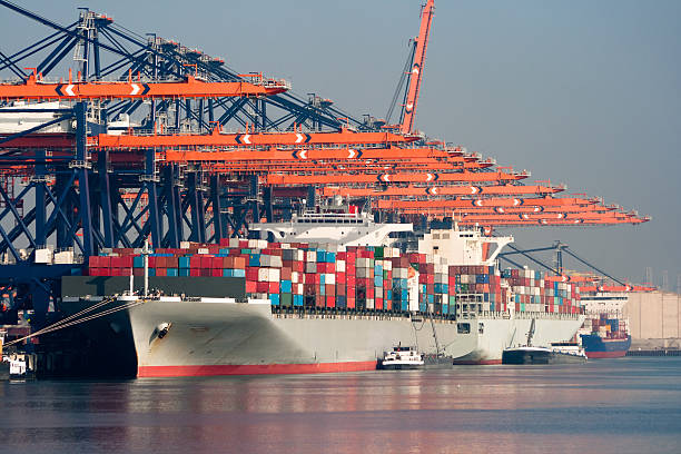 porto di spedizione container - rotterdam foto e immagini stock