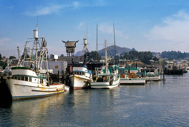 Harbor Hut and Boats, Morro Bay, 1974 The tower for the timeless Harbor Hut restaurant is seen over the boats crowded against the dock at Morro Bay, California.   hearkencreative stock pictures, royalty-free photos & images