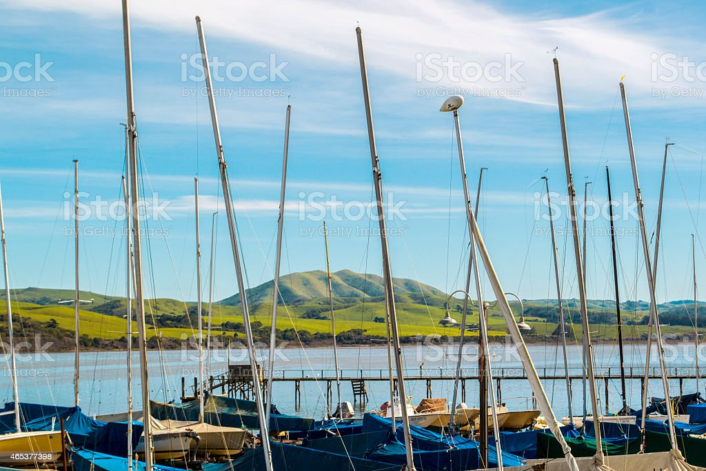 Harbor in Northern California stock photo