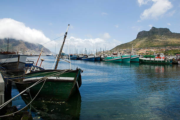Harbour at Hout Bay, Cape Town Harbor shot, with docked vessels at Hout bay, Cape Town hout stock pictures, royalty-free photos & images