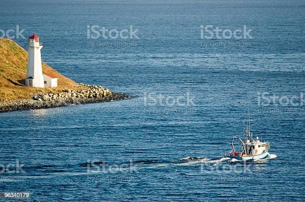 Harbour Lighthouse - zdjęcia stockowe i więcej obrazów Bez ludzi