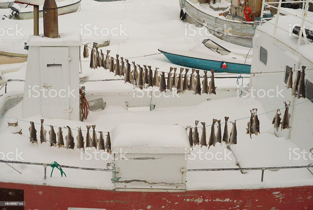 Harbour Szene in Sisimiut – Foto