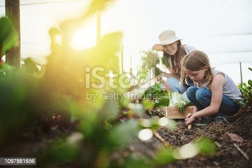 Full length shot of a young mother and her little daughter working on the family farm