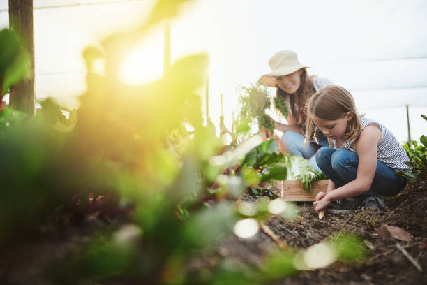 Hard at work on the land Full length shot of a young mother and her little daughter working on the family farm gardening stock pictures, royalty-free photos & images