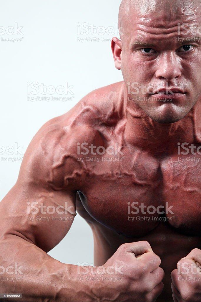 Hard body royalty-free stock photo