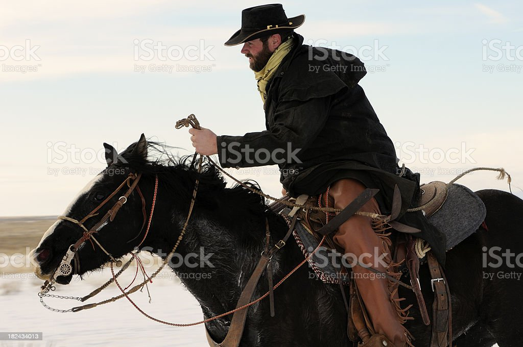 Hard Riding Cowboy In Action stock photo