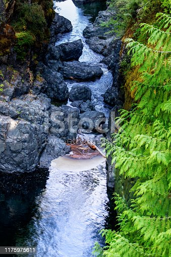 Englishman river is one of the many rivers on the Vancouver Island, Some 100 KM away from Nanaimo on the center of the island, the waterfalls, is hard to reach, but pristine