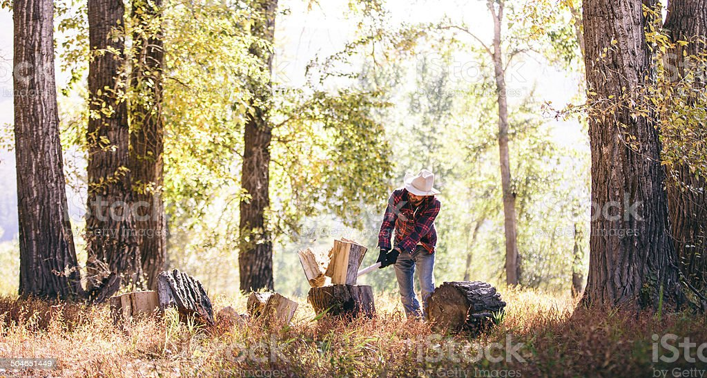 Hard working man chops firewood with axe stock photo