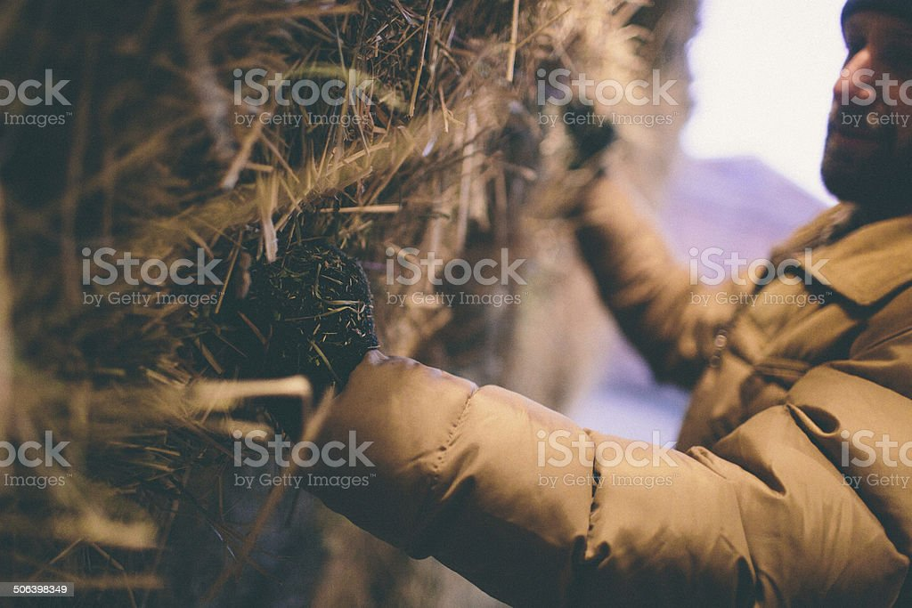 Hard working man grabs hay bale stacked in barn stock photo