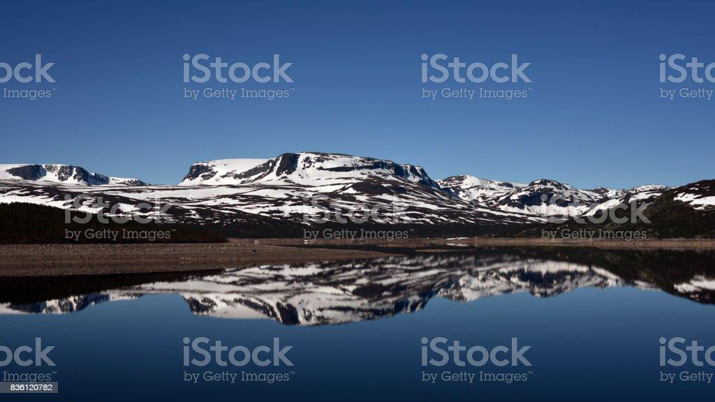De Hardangervidda - foto de stock