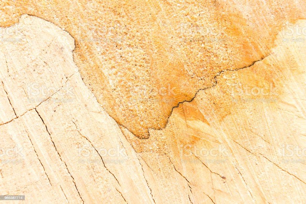 Hartholz und Zimmerei Konzept mit gesägtem Holz Oberfläche - Lizenzfrei Abstrakt Stock-Foto