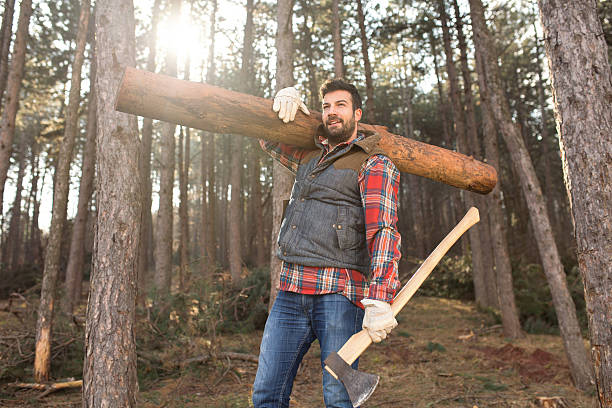 Hardworking Lumberjack Portrait of a young and handsome lumberjack man, carrying a tree trunk on his shoulder, working hard in the forest. lumberjack stock pictures, royalty-free photos & images