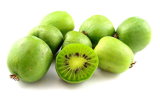 hardy kiwi fruits isolated圖像檔