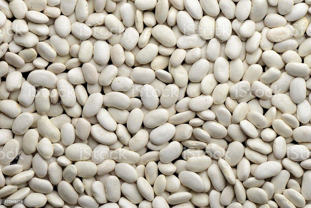 Haricot bean royalty-free stock photo