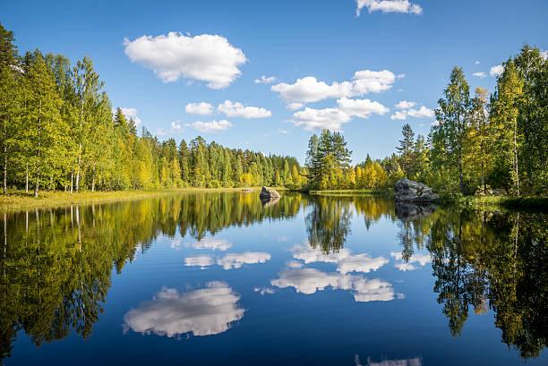 harmonious picture of a tranquil lake - summer sweden bildbanksfoton och bilder