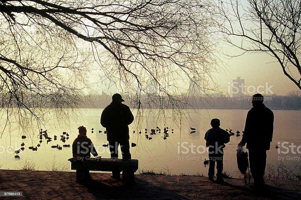 Harmonious scene royalty-free stock photo
