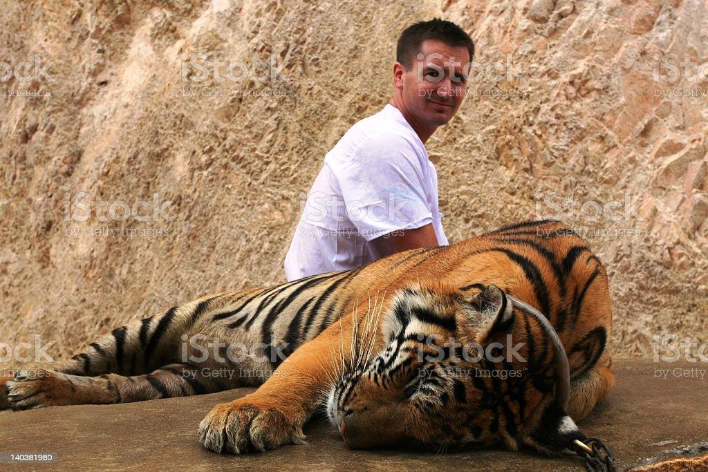 Harmony at the Tiger temple royalty-free stock photo