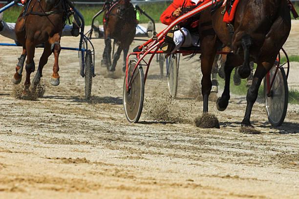 Gurt-Pferderennen – Foto
