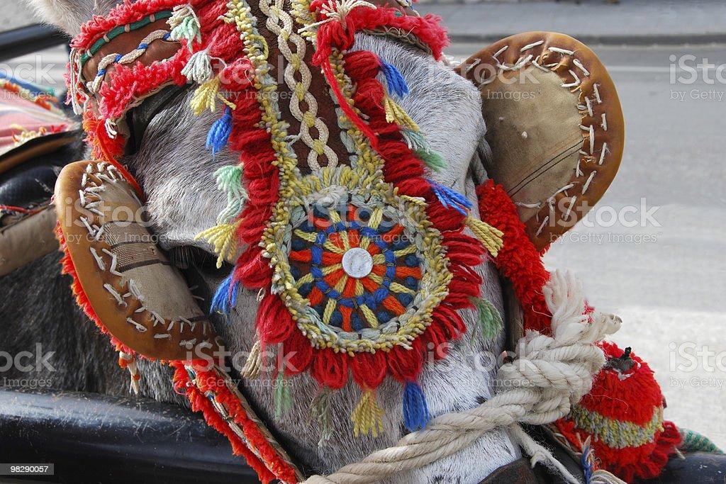 Harness on Donkey at Mijas. Spain royalty-free stock photo