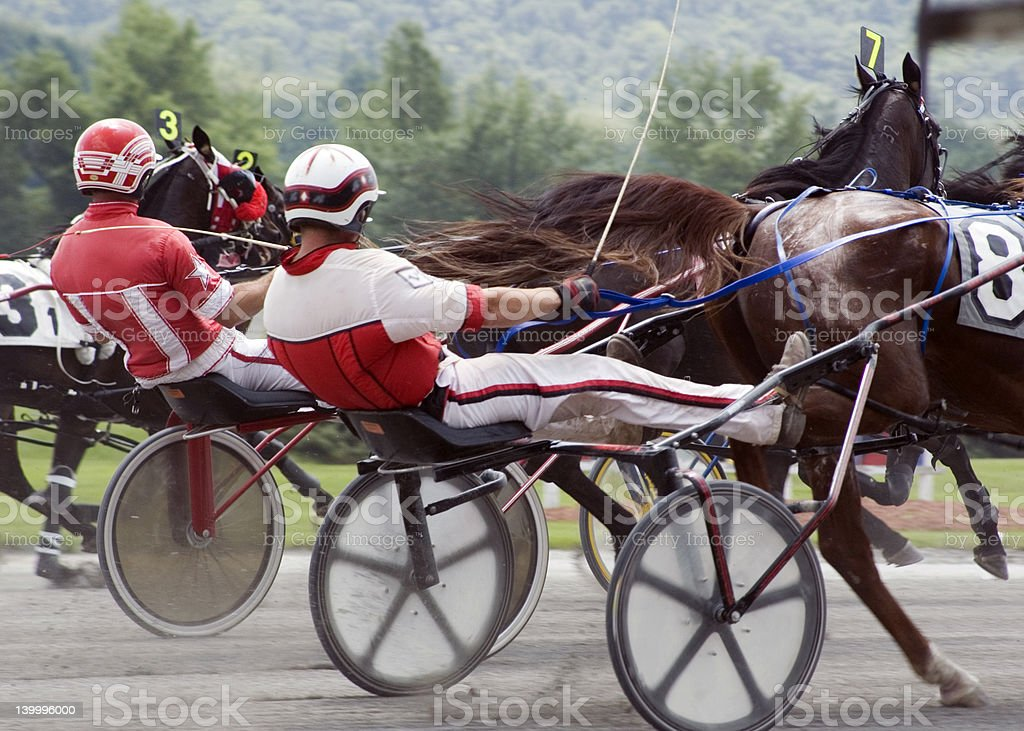 harness race-2 stock photo