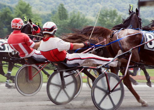Harness Race2 Stock Photo - Download Image Now