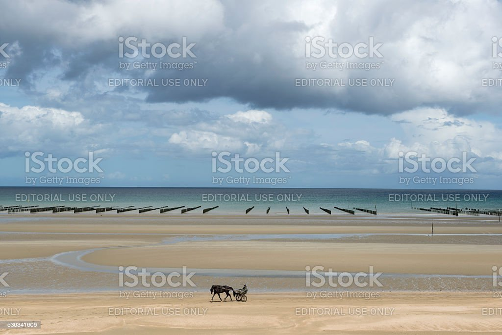 Harness racer and horse training on Utah Beach, Normandy, France stock photo