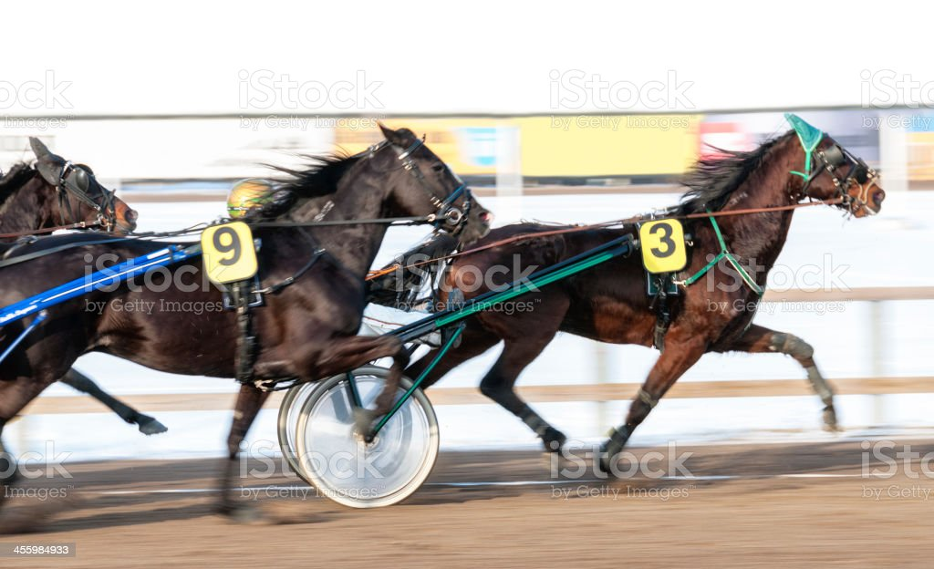 Harness racing horses in a blur along a dirt track stock photo