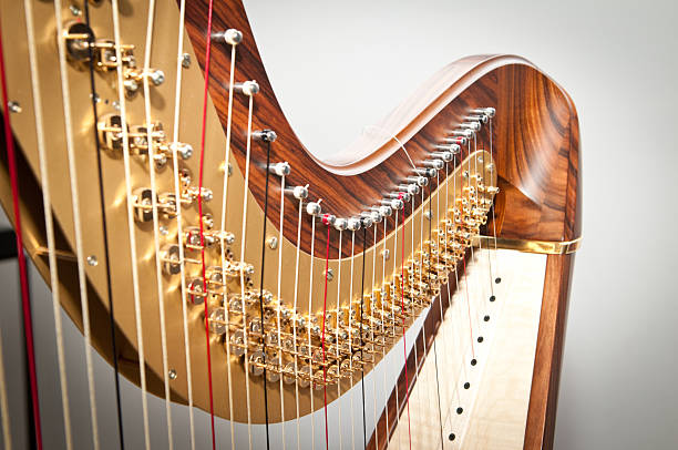 harph - harpist stock photos and pictures