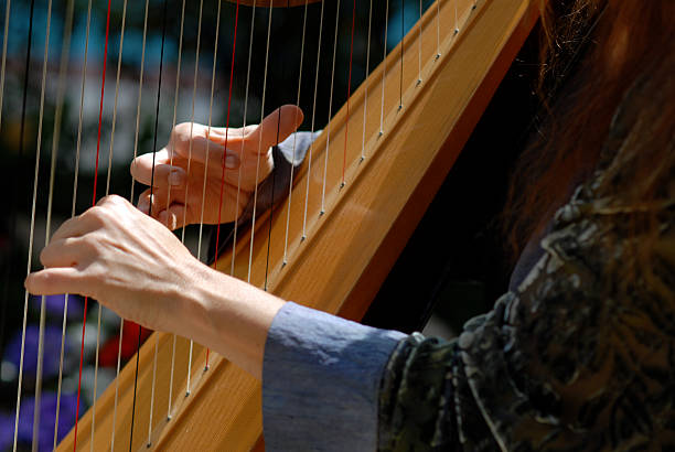 harpist at wedding ceremony close up - harpist stock photos and pictures