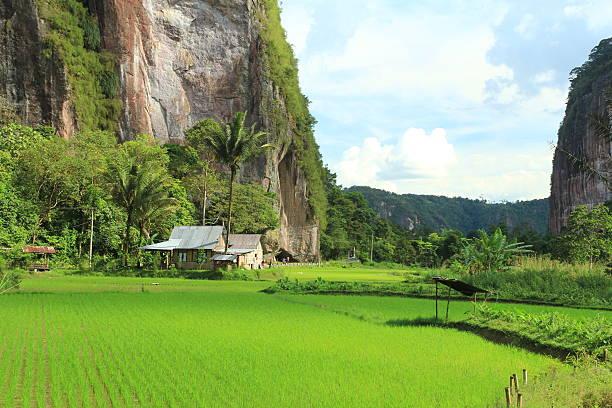 Harraw valley in payakumbuh west sumatra picture id495638034?b=1&k=6&m=495638034&s=612x612&w=0&h=ldfgw9gsftrujjt1hvyz199p827u1oy7bdbs6mjfzee=