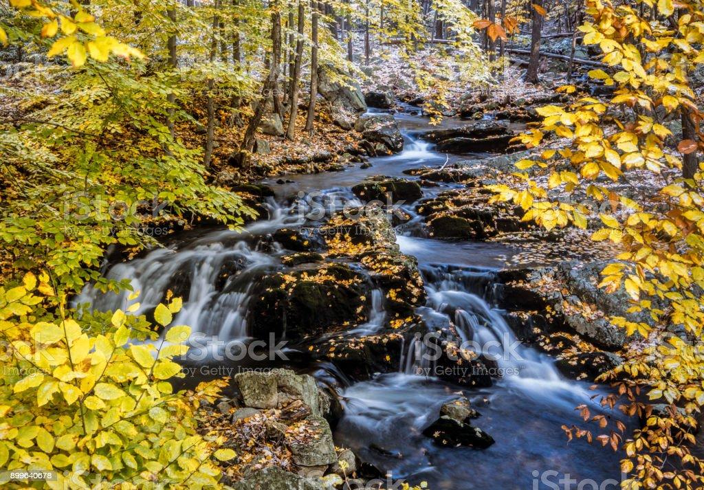 Harriman State Park, New York State stock photo