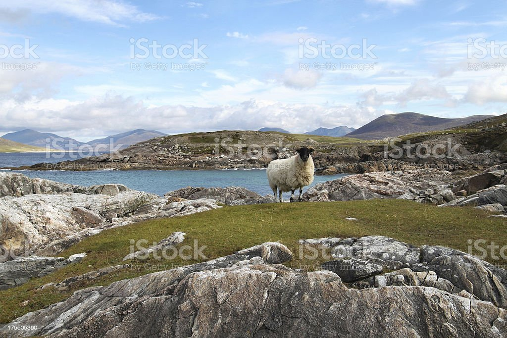 Harris Hills from Horgabost stock photo