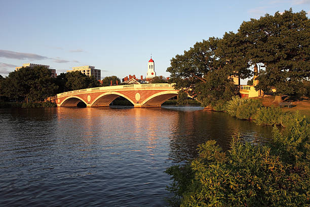 harvard university and the charles river - harvard university stock photos and pictures