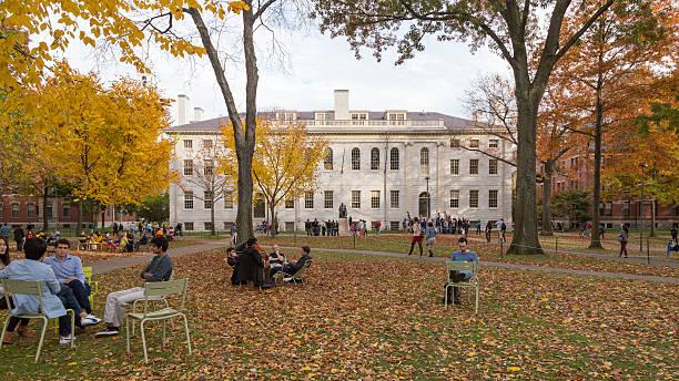 Harvard Yard Fall Day Cambridge, MA, USA - November 2, 2013: Harvard Yard, old heart of Harvard University campus, on a beautiful Fall day in Cambridge, MA, USA on November 2, 2013. ivy league university stock pictures, royalty-free photos & images