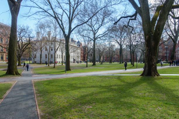 Harvard Yard in Spring stock photo