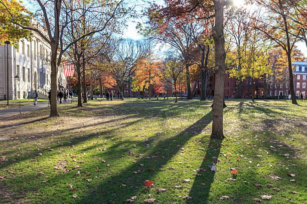 Harvard Yard stock photo
