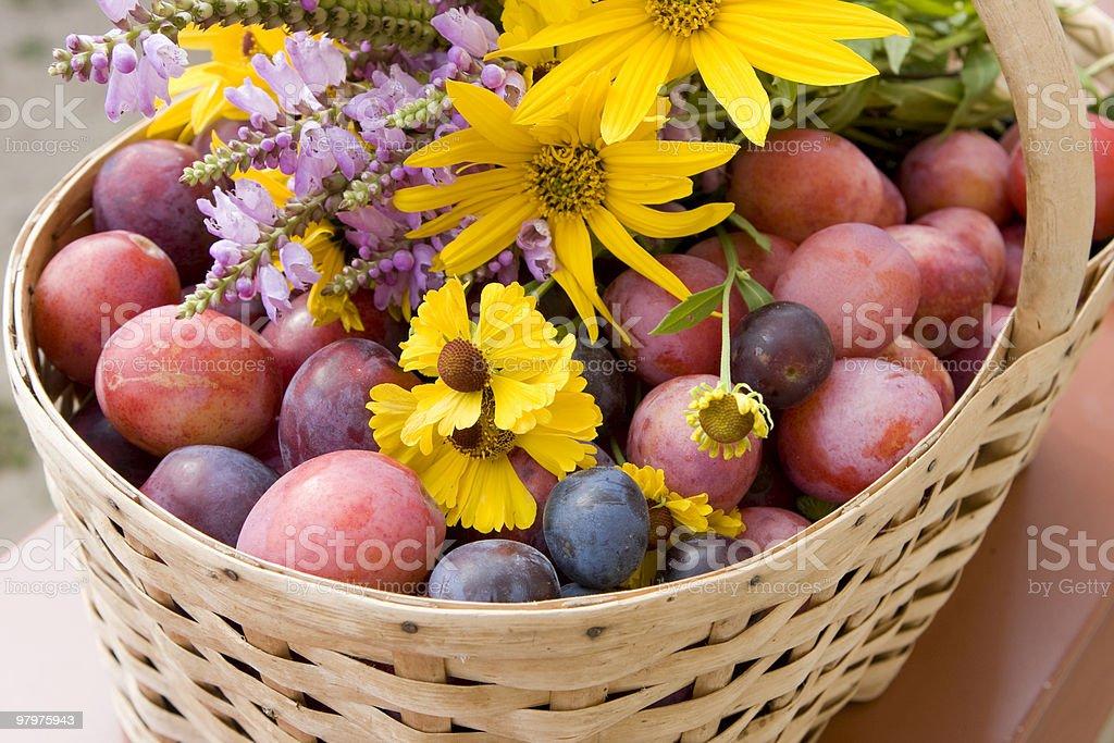 Harvest basket royalty-free stock photo