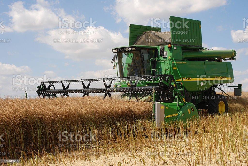 Harvest - combine at canola field stock photo